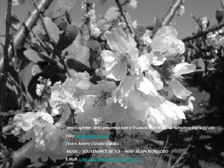 Realizzazione della presentazione e Traduzione in Italiano: Salvatore Inguaggiato Foto: www. assarca. com Testo: