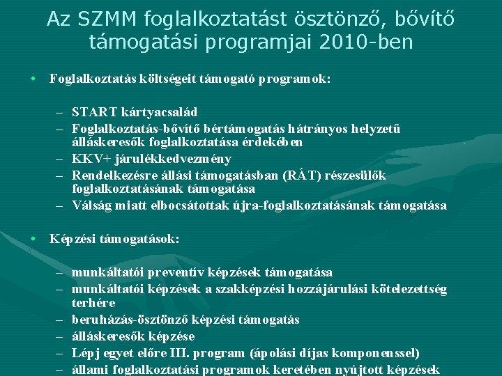 Az SZMM foglalkoztatást ösztönző, bővítő támogatási programjai 2010 -ben • Foglalkoztatás költségeit támogató programok:
