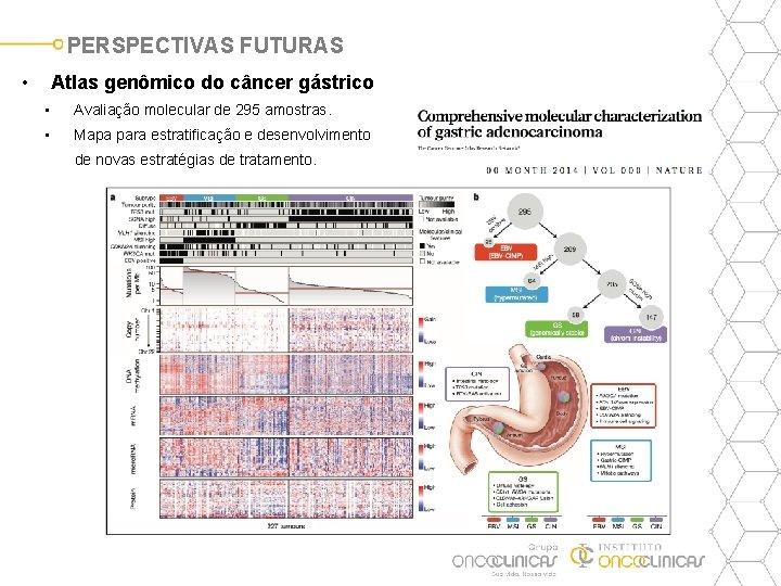 PERSPECTIVAS FUTURAS • Atlas genômico do câncer gástrico • Avaliação molecular de 295 amostras.