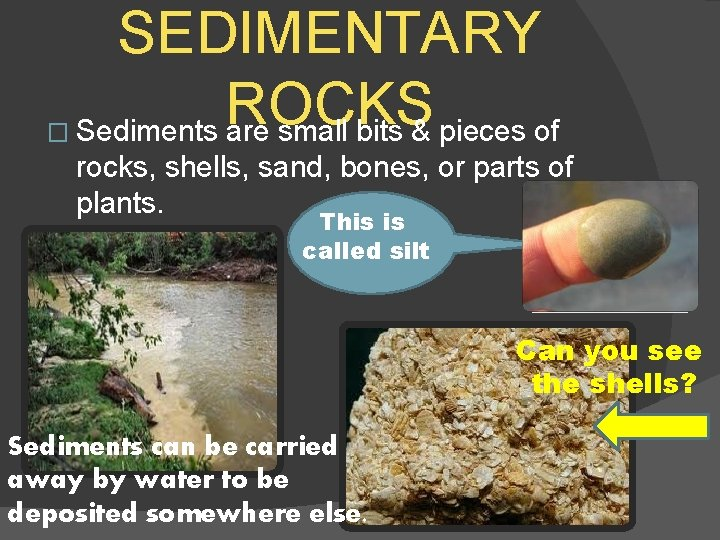 SEDIMENTARY ROCKS � Sediments are small bits & pieces of rocks, shells, sand, bones,