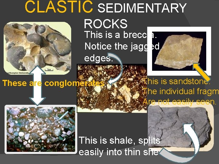 CLASTIC SEDIMENTARY ROCKS This is a breccia. Notice the jagged edges. These are conglomerates