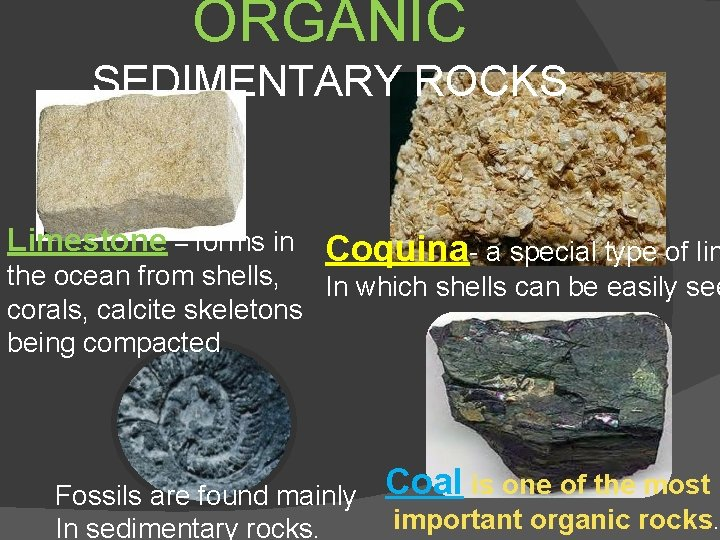 ORGANIC SEDIMENTARY ROCKS Limestone – forms in Coquina- a special type of lim the