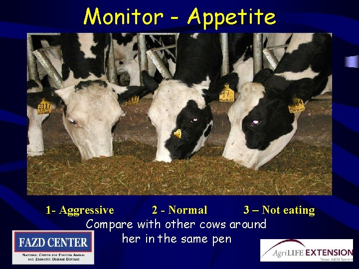Monitor - Appetite 1 - Aggressive 2 - Normal 3 – Not eating Compare