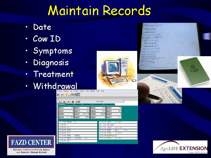 Maintain Records • • • Date Cow ID Symptoms Diagnosis Treatment Withdrawal