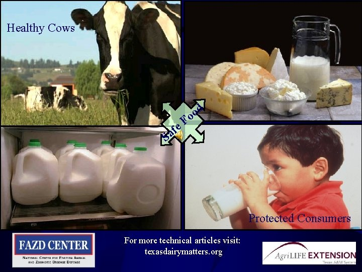 Healthy Cows fe a S o o F d Protected Consumers For more technical