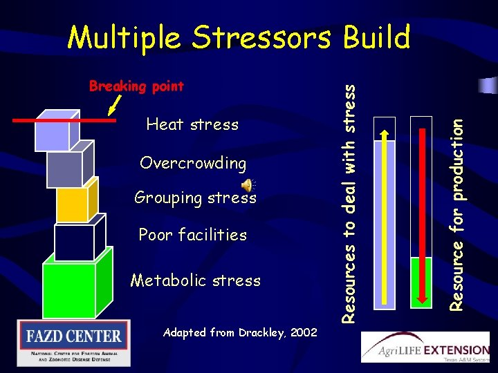 Heat stress Overcrowding Grouping stress Poor facilities Metabolic stress Adapted from Drackley, 2002 Resource