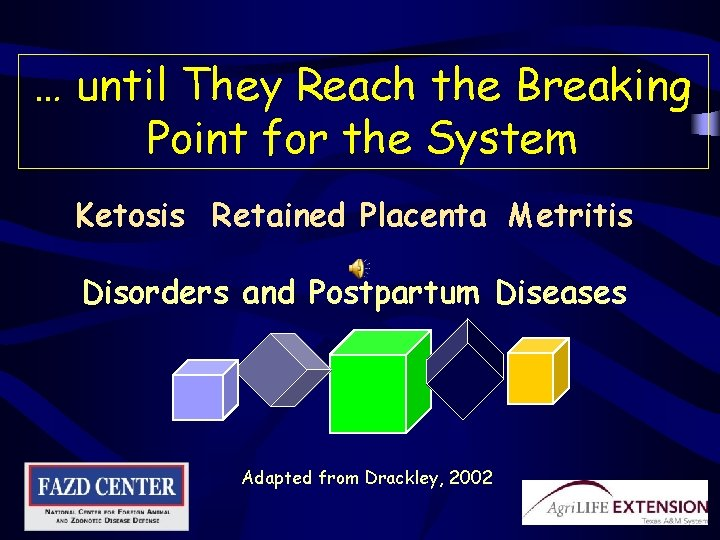 … until They Reach the Breaking Point for the System Ketosis Retained Placenta Metritis