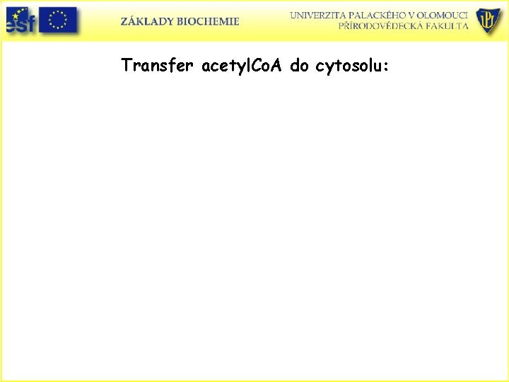 Transfer acetyl. Co. A do cytosolu: