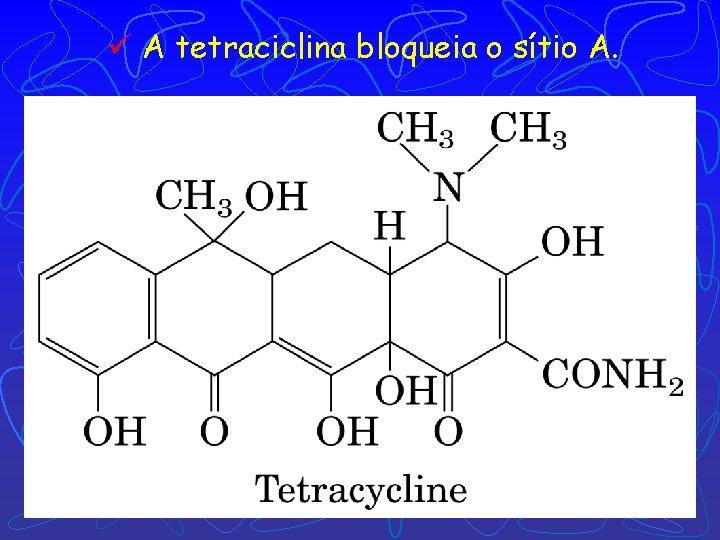ü A tetraciclina bloqueia o sítio A.
