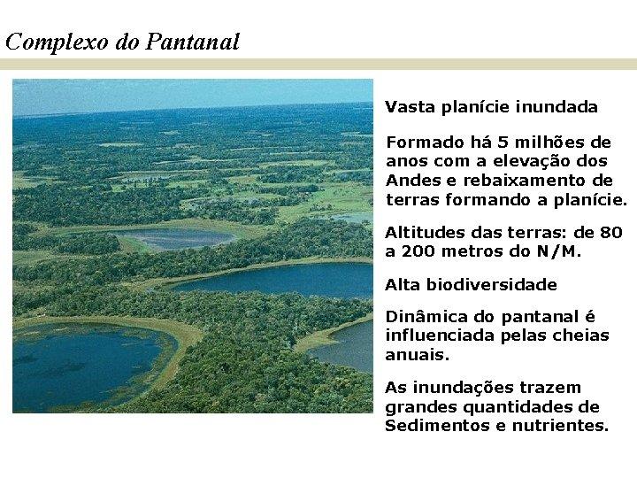 Complexo do Pantanal Vasta planície inundada Formado há 5 milhões de anos com a