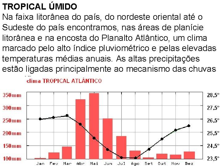 TROPICAL ÚMIDO Na faixa litorânea do país, do nordeste oriental até o Sudeste do