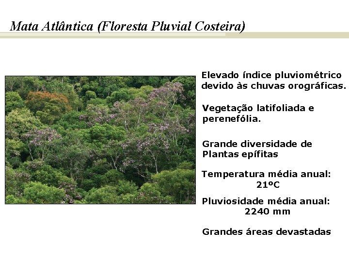 BIOMAS E FITOGEOGRAFIA DO BRASIL Mata Atlântica (Floresta Pluvial Costeira) Elevado índice pluviométrico devido