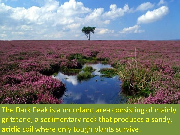 The Dark Peak is a moorland area consisting of mainly gritstone, a sedimentary rock