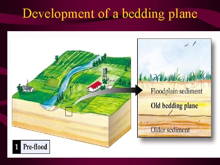 Development of a bedding plane