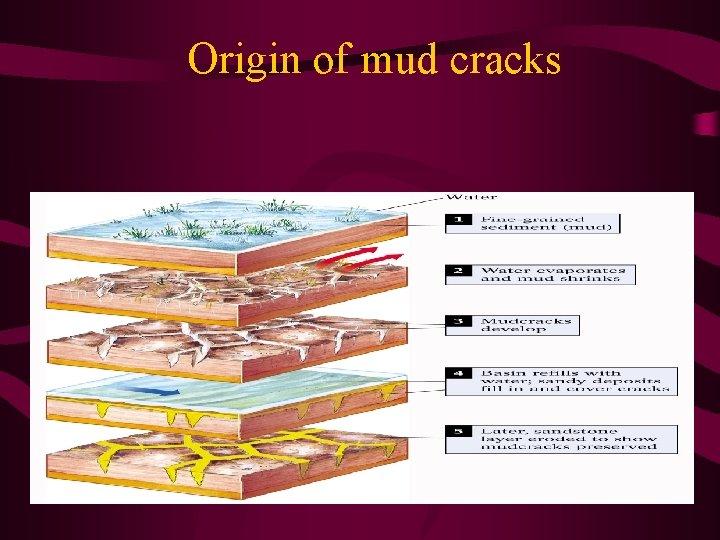 Origin of mud cracks