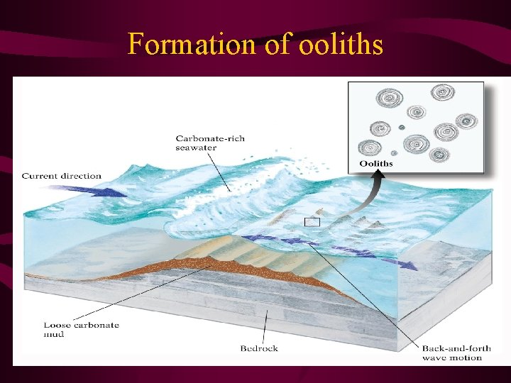 Formation of ooliths