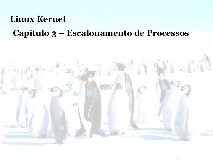 Linux Kernel – Escalonamento de Processos Linux Kernel Capítulo 3 – Escalonamento de Processos