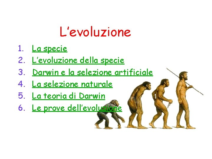 L'evoluzione 1. 2. 3. 4. 5. 6. La specie L'evoluzione della specie Darwin e