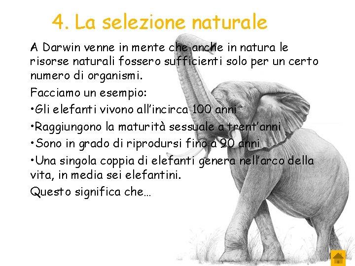 4. La selezione naturale A Darwin venne in mente che anche in natura le