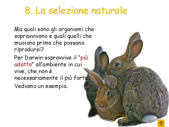 8. La selezione naturale Ma quali sono gli organismi che sopravvivono e quali quelli
