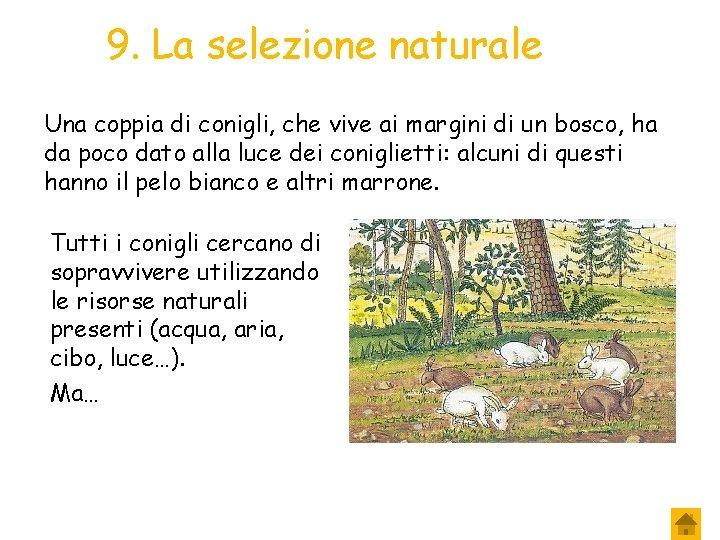 9. La selezione naturale Una coppia di conigli, che vive ai margini di un