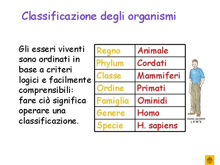 Classificazione degli organismi Gli esseri viventi sono ordinati in base a criteri logici e