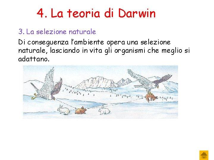 4. La teoria di Darwin 3. La selezione naturale Di conseguenza l'ambiente opera una