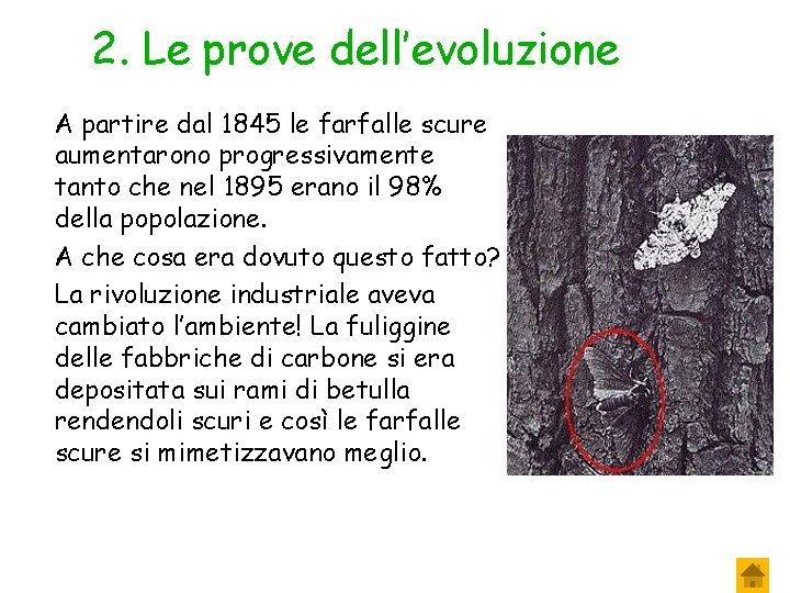 2. Le prove dell'evoluzione A partire dal 1845 le farfalle scure aumentarono progressivamente tanto