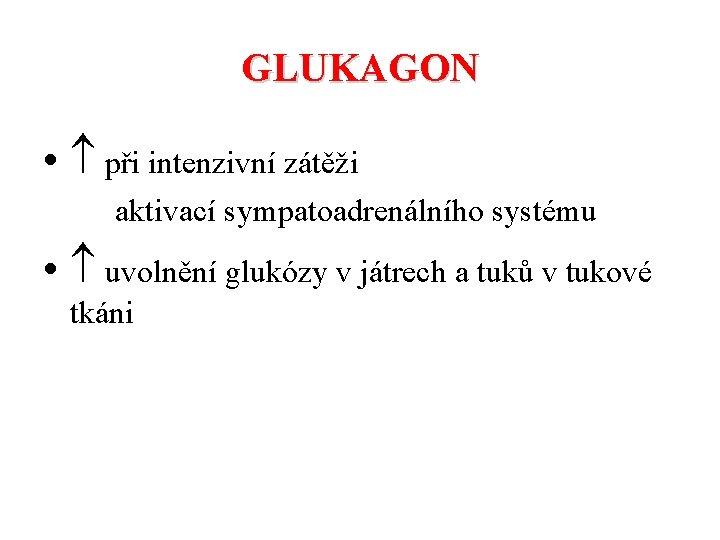 GLUKAGON • při intenzivní zátěži aktivací sympatoadrenálního systému • uvolnění glukózy v játrech a