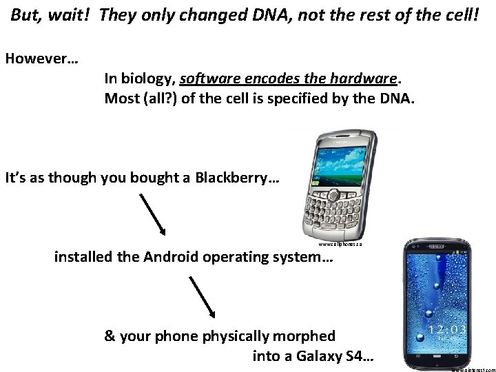 But, wait! They only changed DNA, not the rest of the cell! However… In