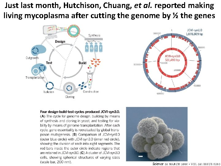 Just last month, Hutchison, Chuang, et al. reported making living mycoplasma after cutting the