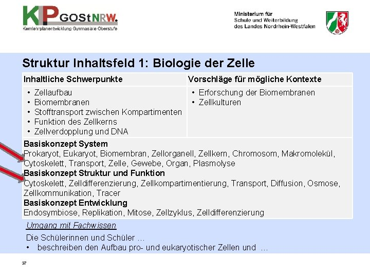 Struktur Inhaltsfeld 1: Biologie der Zelle Inhaltliche Schwerpunkte Vorschläge für mögliche Kontexte • Zellaufbau
