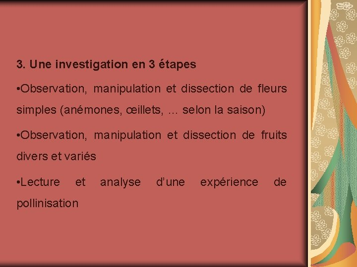 3. Une investigation en 3 étapes • Observation, manipulation et dissection de fleurs simples