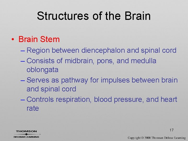 Structures of the Brain • Brain Stem – Region between diencephalon and spinal cord