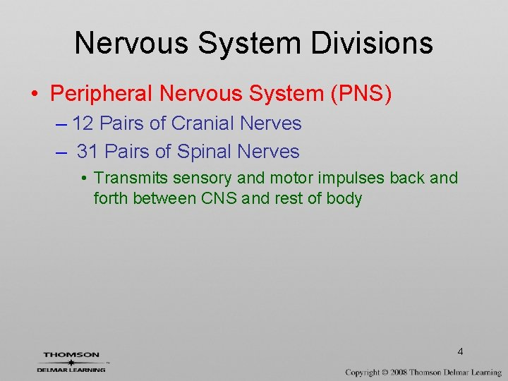 Nervous System Divisions • Peripheral Nervous System (PNS) – 12 Pairs of Cranial Nerves