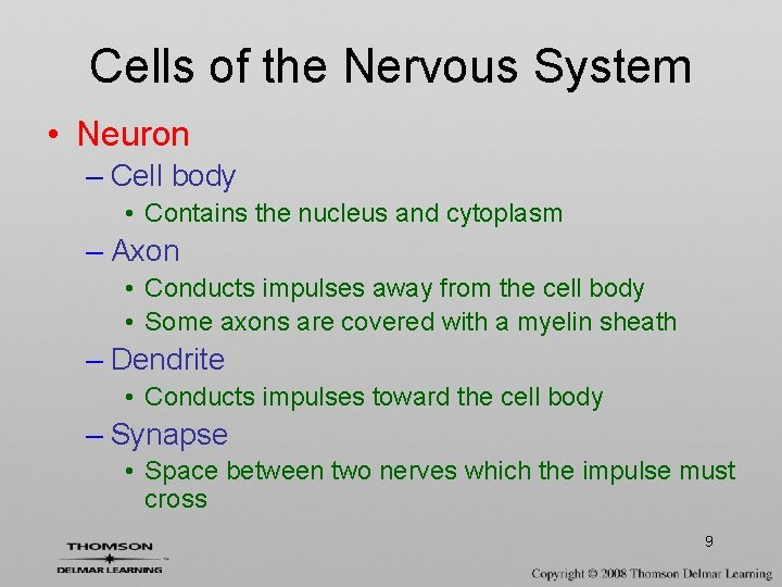 Cells of the Nervous System • Neuron – Cell body • Contains the nucleus