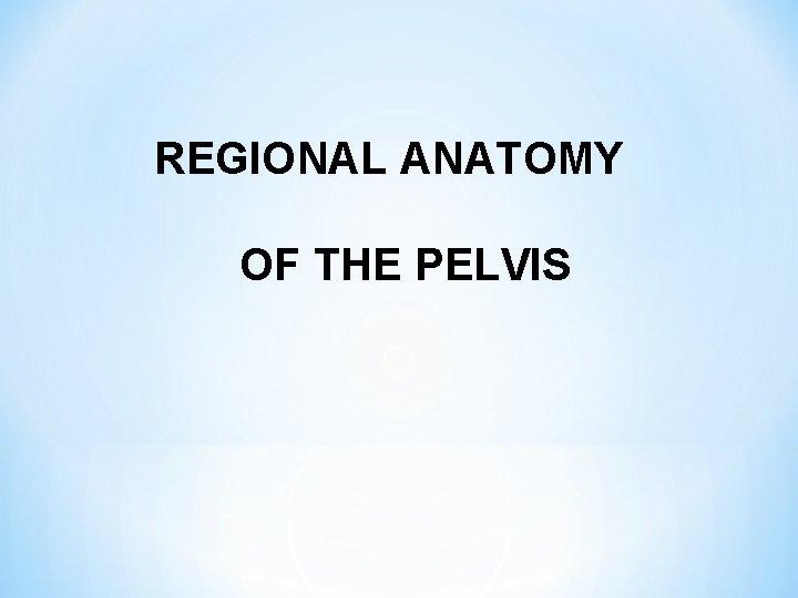 REGIONAL ANATOMY OF THE PELVIS