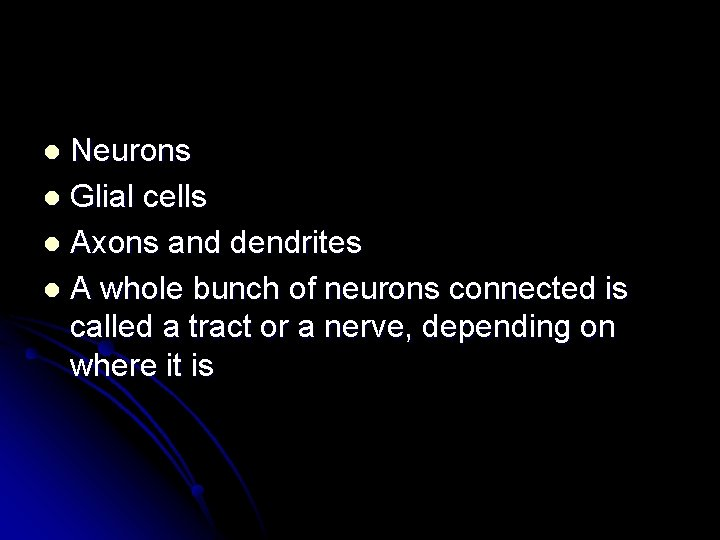 Neurons l Glial cells l Axons and dendrites l A whole bunch of neurons