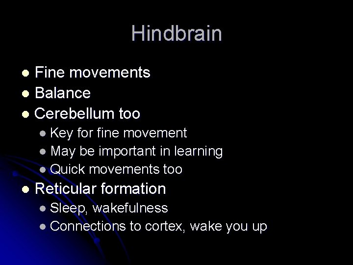 Hindbrain Fine movements l Balance l Cerebellum too l l Key for fine movement