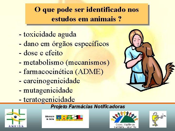 O que pode ser identificado nos estudos em animais ? - toxicidade aguda -