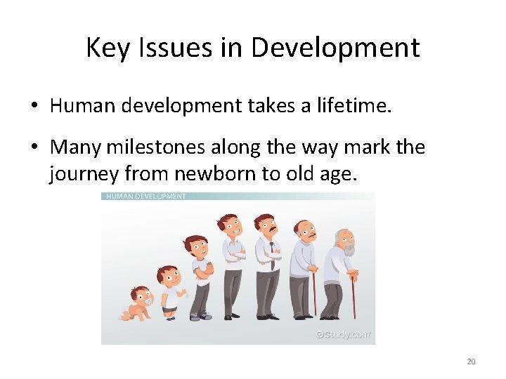 Key Issues in Development • Human development takes a lifetime. • Many milestones along