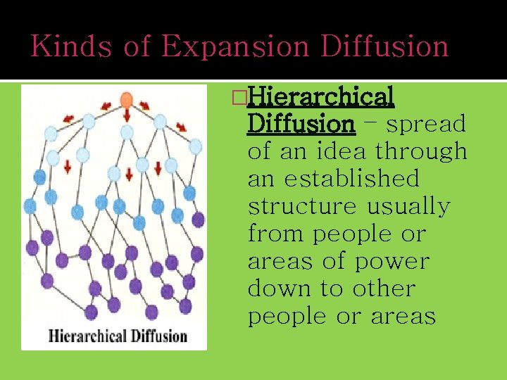 Kinds of Expansion Diffusion �Hierarchical Diffusion – spread of an idea through an established