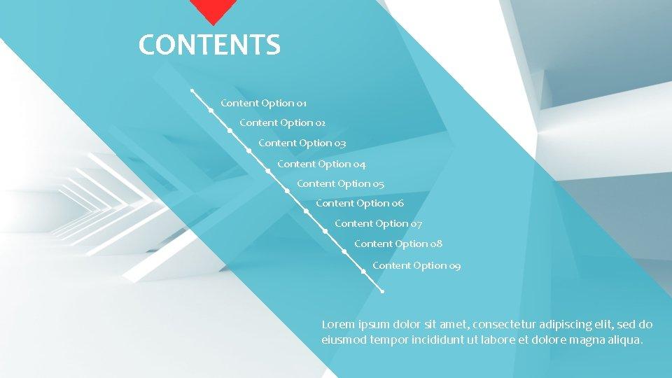 CONTENTS Content Option 01 Content Option 02 Content Option 03 Content Option 04 Content