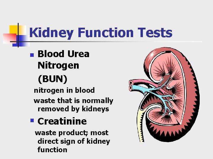Kidney Function Tests n Blood Urea Nitrogen (BUN) nitrogen in blood waste that is