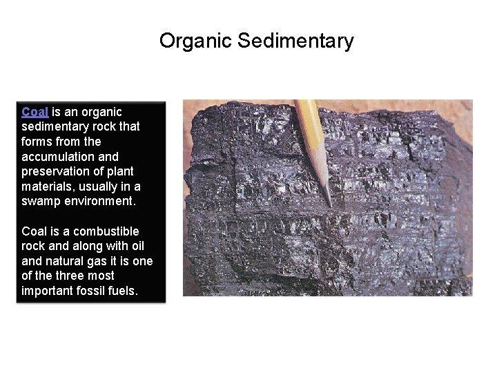 Organic Sedimentary Coal is an organic sedimentary rock that forms from the accumulation and