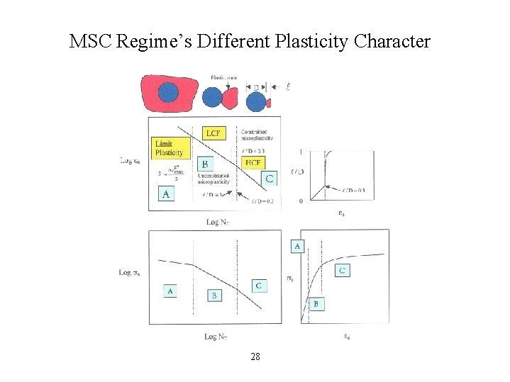 MSC Regime's Different Plasticity Character 28