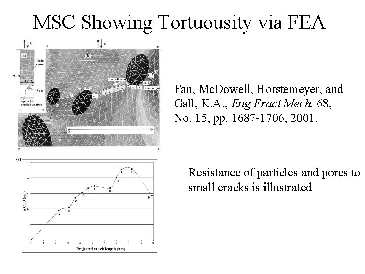 MSC Showing Tortuousity via FEA Fan, Mc. Dowell, Horstemeyer, and Gall, K. A. ,