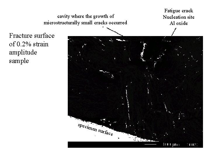 cavity where the growth of microstructurally small cracks occurred Fracture surface of 0. 2%