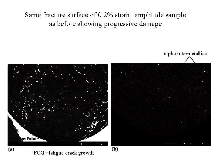 Same fracture surface of 0. 2% strain amplitude sample as before showing progressive damage