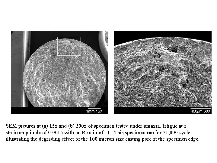 SEM pictures at (a) 15 x and (b) 200 x of specimen tested under